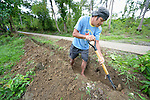 A man digs a ditch for a water pipe as part of a cash for work program in the village of Cambayan in the Philippines province of Samar. The region was hit hard by Typhoon Haiyan in November 2013. Known locally as Yolanda, the storm left much of the community's infrastructure a shambles. Norwegian Church Aid, a member of the ACT Alliance, is helping the community rehabilitate its potable water system as well as build new toilets.