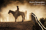 A photo of a backlit cowboy on horseback holding ranch horse that are being moved, surrounded by dust. Cowboy Photos, riding,roping,horseback