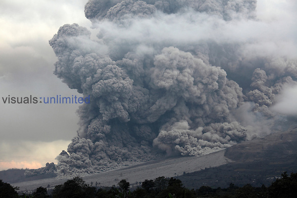 Large pyroclastic flow (pyroclastic density current) descends flank of Sinabung Volcano following lava dome collapse, Sumatra, Indonesia.