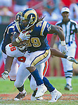 St. Louis Rams running back Steven Jackson (39) breaks free for a first down against the Tampa Bay Buccaneers. The Buccaneers defeated the Rams 18-17 in an NFL game  in Tampa, Fla, Sunday, October 25, 2010. (AP Photo/Margaret Bowles)