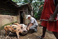 Rocco Falconer with pigs owned by Planting Promise, Newton, Freetown, Sierra Leone. Planting Promise is an organization dedicated to the development of education in Sierra Leone. Its aim is to bring opportunities to initiate self-run, self-supporting projects that offer real solutions to the difficulties facing the world's poorest country. They believe real and lasting development comes from below, from local projects that address specific needs, rather than large international models. To this end, they currently run five projects that aim to bring wealth into the country through business. The profits from these businesses are then used to support free education for children and adults...Through the combination of business with social progress, the charity hopes that they are providing real, lasting and profound changes for the better, by promoting sustainable and beneficial industry in the country, and putting it to the service to the needs of the people. As well as providing the income to fund the school, the farms will also be an example of successful commercial enterprise to teach the children in the school the viability of profit-making schemes that go beyond subsistence models, the only things the children of these desperately poor areas are accustomed to. By learning particular details of the challenges that they will face, the children will emerge from this school equipped to contribute in a real way to their society.
