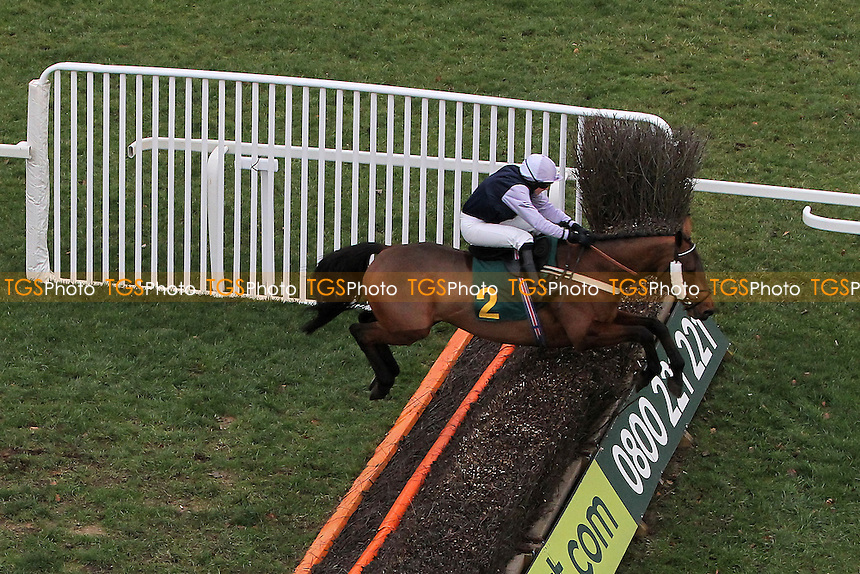 Fine Parchment ridden by Mr H A A Bannister in jumping action during the Betfair Commits £40m to British Racing Handicap Chase - Horse Racing at Fakenham Racecourse, Norfolk - 10/12/12 - MANDATORY CREDIT: Gavin Ellis/TGSPHOTO - Self billing applies where appropriate - 0845 094 6026 - contact@tgsphoto.co.uk - NO UNPAID USE.