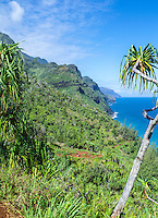 A view of Kaua'i's Na Pali coastline, with a hiker on a distant part of the Kalalau Trail.