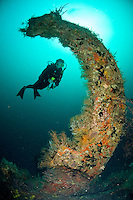 Diver at the Wreck Bianca C<br /> Grenadines