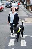 Visually impaired woman walking across the road with a guide dog. MR
