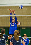 1 November 2015: Yeshiva University Maccabee Middle Blocker Gavriela Colton, a Junior from Teaneck, NJ, attempts a block against the Saint Joseph College Bears at SUNY Old Westbury in Old Westbury, NY. The Bears shut out the Maccabees 3-0 in NCAA women's volleyball, Skyline Conference play. Mandatory Credit: Ed Wolfstein Photo *** RAW (NEF) Image File Available ***