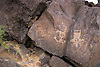 Ancient Native American Rock Art, Petroglyph National Monument, New Mexico