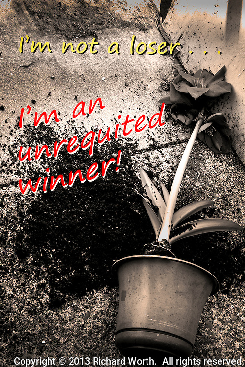 I'm not a loser . . .  I'm an unrequited winner!