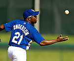 13 March 2007: Los Angeles Dodgers infielder Marlon Anderson takes fielding practice prior to facing the Detroit Tigers in a spring training game at Holman Stadium in Vero Beach, Florida.<br /> <br /> Mandatory Photo Credit: Ed Wolfstein Photo