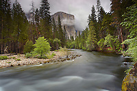 The Merced River with the large granite monolith of El Capitan looming in the distance in the fog and mist, Yosemite National Park, California, USA.