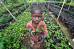 Jeslaine Adolf, 8, holds seedlings in a plant nursery in Despagne, an isolated village in southern Haiti where the Lutheran World Federation has been working with residents to improve their quality of life. The LWF-sponsored nursery helps residents combat their country's rampant deforestation.