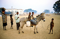 Angola. Cuando Cubango. Mavinga. Late afternoon on the main dirty and sandy road. Family on its way back home. Children seated on a donkey ride. © 2002 Didier Ruef