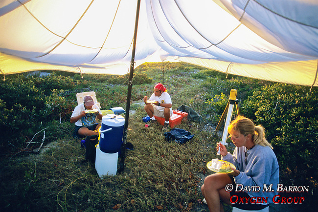 Paco Ollervides, Sean Sanders & Ladonna Wyatt Having Dinner