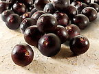 Stock fotos &amp; images of the acai berries the super fruit anti oxident from the Amazon. The acai berry has been associated with helping weight loss.