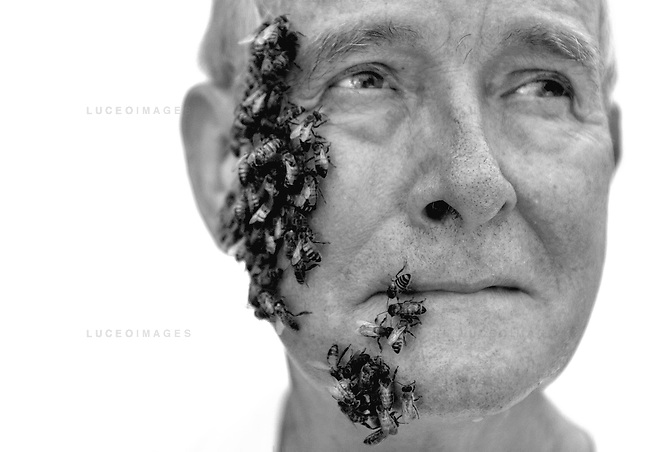 "Dr. Norman Gary has worked with bees for more than 40 years and estimates being stung more than 75,000 times throughout his career. kpgec ""Bee Man"""