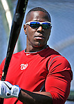 19 February 2011: Washington Nationals' outfielder Roger Bernadina prepares for hitting drills during Spring Training at the Carl Barger Baseball Complex in Viera, Florida. Mandatory Credit: Ed Wolfstein Photo
