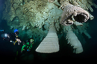 RX0744-D. scuba divers (model released), a professional cave diving guide (left, with blue helmet) shows tourist unusual speleothems, limestone formations hanging from the ceiling of a submerged cavern 100 feet below the surface. The white mistiness in the water is due to hydrogen sulfide. Riviera Maya, Yucatan Peninsula, Mexico.<br /> Photo Copyright &copy; Brandon Cole. All rights reserved worldwide.  www.brandoncole.com