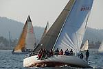 Octavia sailing off Santa Cruz