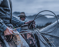 Cowboy hands show the rugged character of the american cowboy in the modern world.