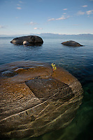 """Boulders on Lake Tahoe 27"" - These boulders were photographed in the early morning near Speedboat Beach, Lake Tahoe."