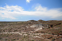 Navajo County, Arizona – A panoramic view of the Giants Logs trail area of the park. Some visitors are seen in the background walking along the trail. The Petrified Forest National Park in northeastern Arizona remains one of the most popular attractions in the United States. The park attracts thousands of visitors a year for the large amount of petrified wood sediments from ancient trees. Photo by Eduardo Barraza © 2014