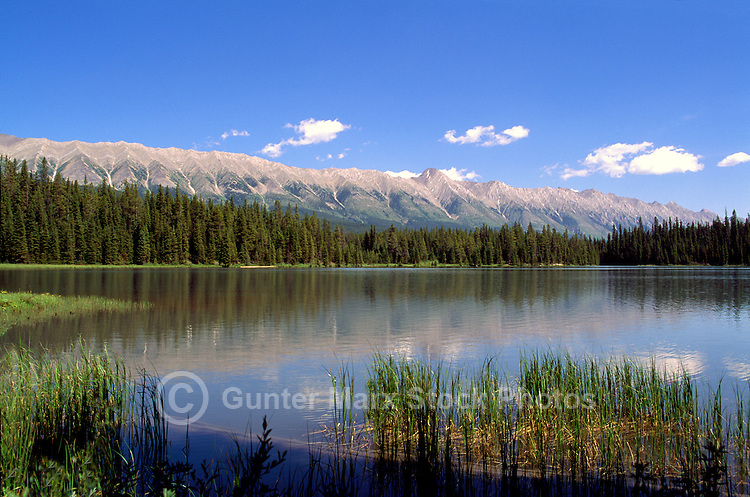 Rocky Mountains, Canadian Rockies, BC, British Columbia, Canada - Lower Elk Lake and Elk Mountain Range, Elk Lakes Provincial Park near Elkford, Summer