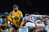 Ben McCalman of Australia looks on at a scrum. Rugby World Cup Semi Final between Argentina v Australia on October 25, 2015 at Twickenham Stadium in London, England. Photo by: Patrick Khachfe / Onside Images