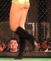 MMA cage fighting at the Main Street Arena in Charlottesville, Va. Photo/Andrew Shurtleff