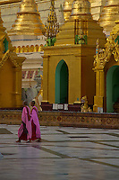 Life at the Shwedagon Pagoda during the month of the full Moon, Yangon Myanmar