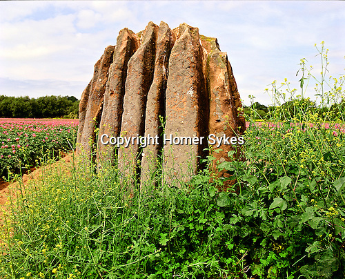 The Queens Stone, Nr Goodrich, Hereford and Worcester England. Celtic Britain published by Orion. A Bronze Age monolith
