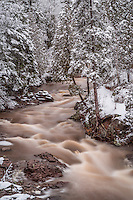 """""""Spring on Amity Creek"""" ~ The rivers and creeks flow with spring's vigor, and a late winter storm flocked the landscape. Nature paints the transition of seasons with great care."""