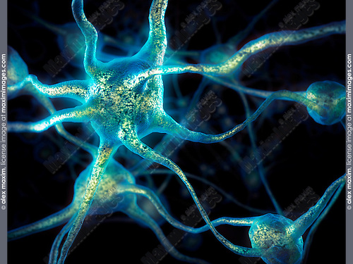Network of neurons, Brain cells, nervous system, conceptual 3D illustration