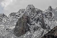 NEW YEAR'S CATALINA SNOW