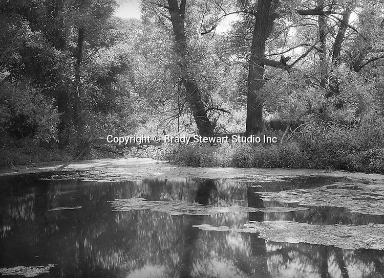 Fayette County PA:  A sunlit pool near Bear Run River - 1915.  The Stewart family often took weekend trips to Fayette County's Bear Run.  Bear Run is a nature reserve today and is near Frank Lloyd Wright's Fallingwater.