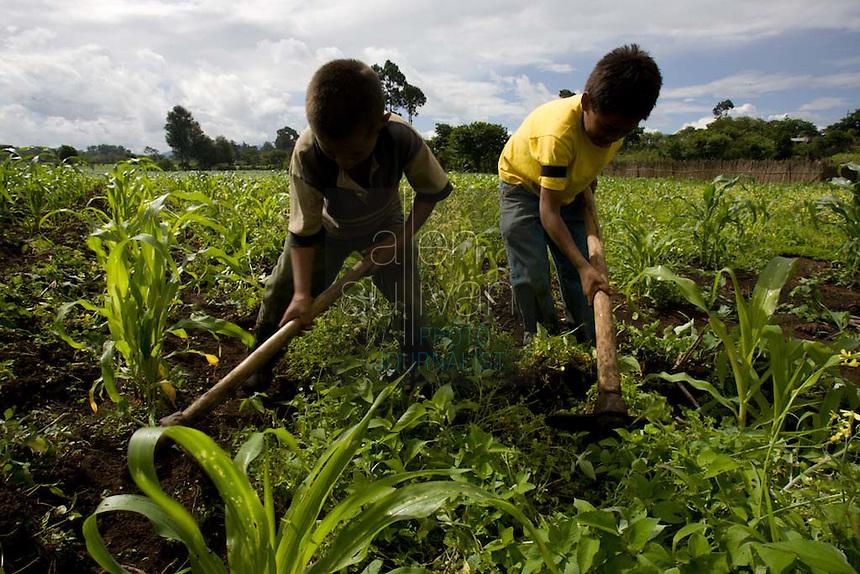 Children on a summer break from school work on their uncle's farm near Chimaltenango, Guatemala.