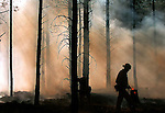 Flagstaff firefighters work to contain a brush fire set by an arsonist near the intersection of W. Route 66 and Woody Mountain Road in Flagstaff, Arizona.