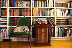 "The Portland, Oregon home of Wendy Burden, author of  the memoir, Dead End Gene Pool. The Dining room where Ms. Burden works is filled with a marvelous collection of books. Ms. Burden's dog, ""Spit,"" naps in the dining room."