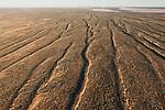 Aerial - Simpson Desert Regional Reserve. The many sand dunes of the Simpson Desert.