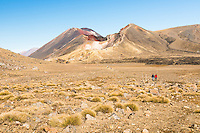 Views of Mount Ngaruhoe and Red Crater from Tongariro Alpine Crossing Track, Tongariro National Park, Central Plateau, North Island, UNESCO World Heritage Area, New Zealand, NZ