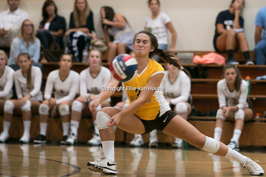 2014 girls volleyball: St. Francis High School