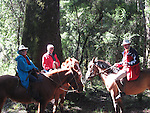 Chile, Lake Country: People riding horses at Peulla in a meadow in the Andes..Photo #: ch614-266..Photo copyright Lee Foster www.fostertravel.com, lee@fostertravel.com, 510-549-2202.