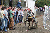 3/10/2010. Travelers show off their horses in the trotting lane during the Ballinasloe Horse Fair, Ballinasloe, County Galway, Ireland. Picture James Horan