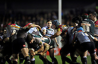 Jono Kitto of Leicester Tigers shouts out instructions as the forwards compete for the ball. Aviva Premiership match, between Harlequins and Leicester Tigers on February 19, 2016 at the Twickenham Stoop in London, England. Photo by: Patrick Khachfe / JMP