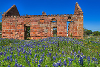 This old house which was falling down taken off of Hwy 71 with bluebonnets.