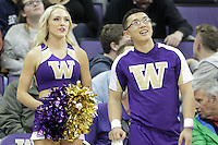 DEC 22, 2015:  Washington cheerleader Brittany Kinal entertained fans during a TV timeout in the game against Seattle University. Washington defeated Seattle University 79-68 at Alaska Airlines Arena in Seattle, WA.