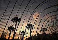 L'Umbracle, « A promenade with a view », City of Arts and Sciences, 2000, Santiago Calatrava, Valencia, Comunitat Valenciana, Spain Picture by Manuel Cohen
