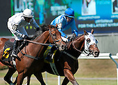 "Gustavian takes the ""Glory,"" Staying On scores in Entenmann at Belmont Park - 09/19/2013"