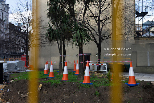 Incongruously odd landscape of traffic cones, striped tape and urban trees on construction site.