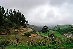 Driving on the winding roads near Cayambe, Ecuador.