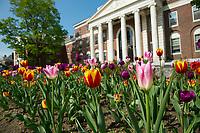 20170517 Spring Campus